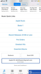 iTunes Store App login sucess